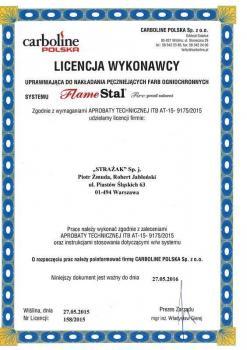 zabezpieczenia bierne - certyfikat 11