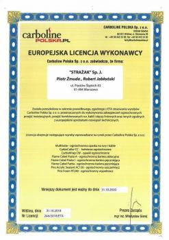 zabezpieczenia bierne - certyfikat 42