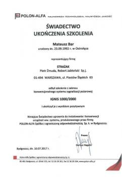 zabezpieczenia czynne certyfikat 163